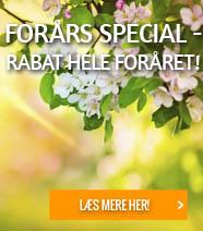 Forårs Special
